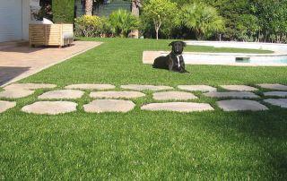 migliore erba sintetica per i cani
